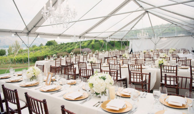Party Linens Near Me – Top Tips to Consider When Choosing a Party Linen ,Tent  Rentals Near Me -1000SKU.COM